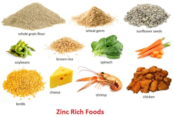 Zinc Rich Foods Foods High In Zinc