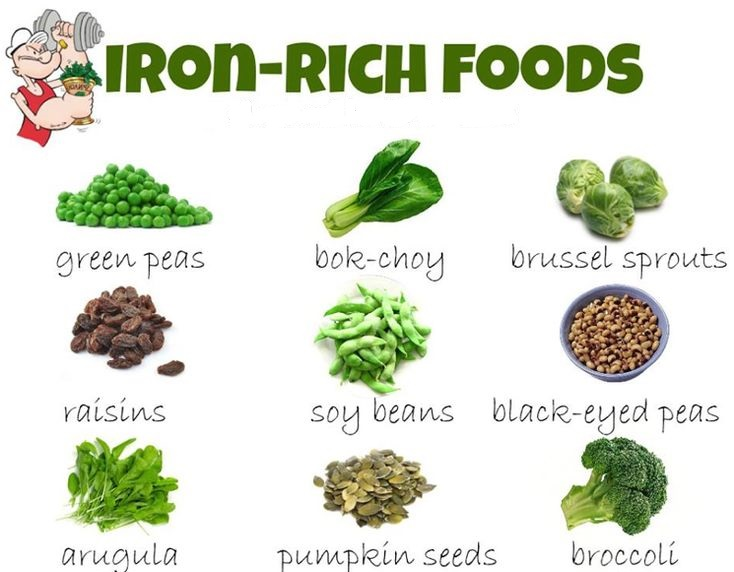 Most Nutrient Rich Foods List